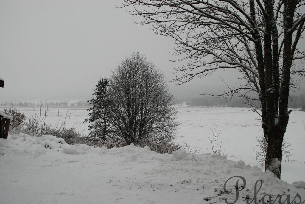 1 151212 Snøfall