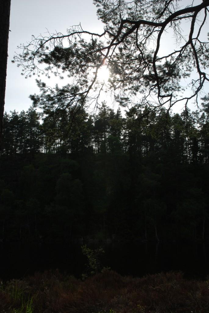 12 140713 130713 Telttur i Tresticklans Nationalpark - Kleningen