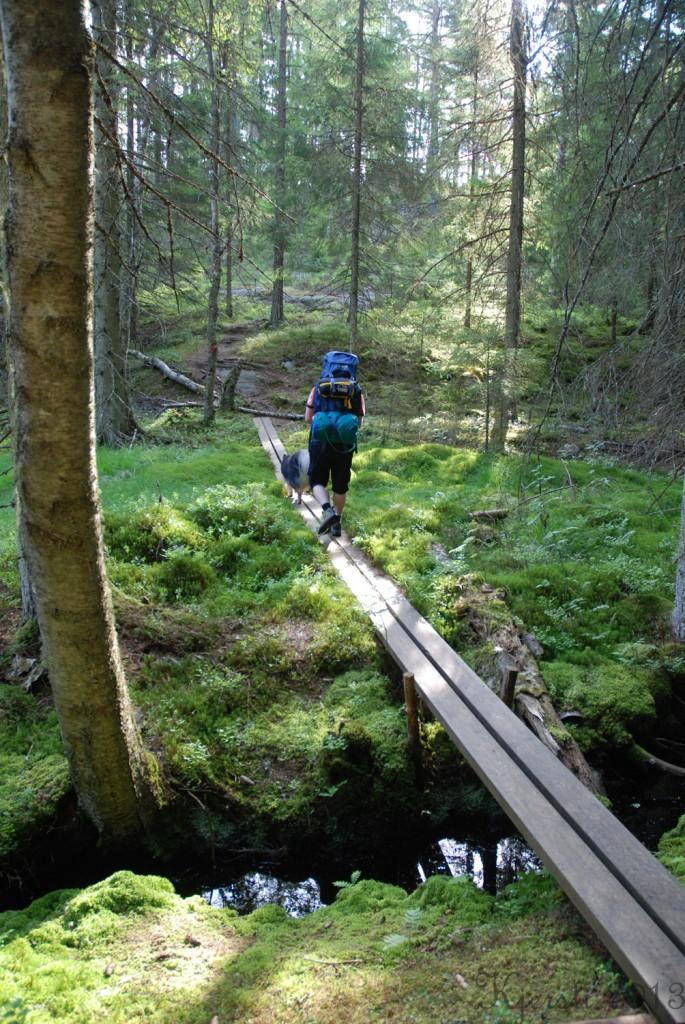 17 140713 Telttur i Tresticklans Nationalpark