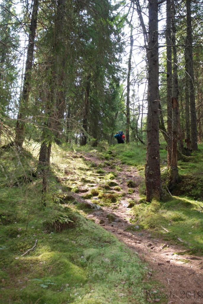 6 140713 130713 Telttur i Tresticklans Nationalpark
