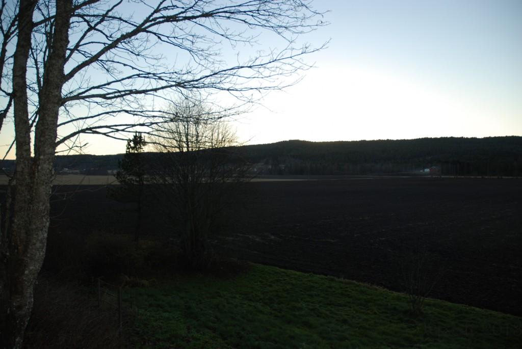 1 171113 Uke 46 - Ukens utsikt