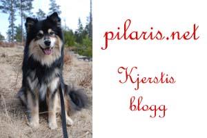 Pilaris – blogg