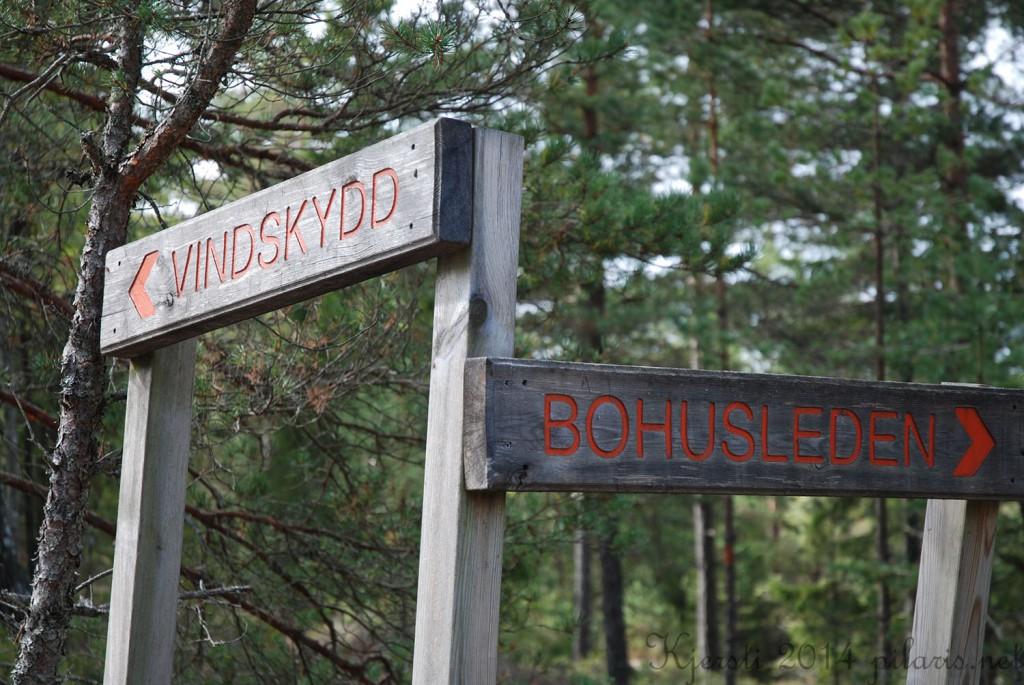 9 060914 310814 Tur fra Håvedalen til Sandvatten