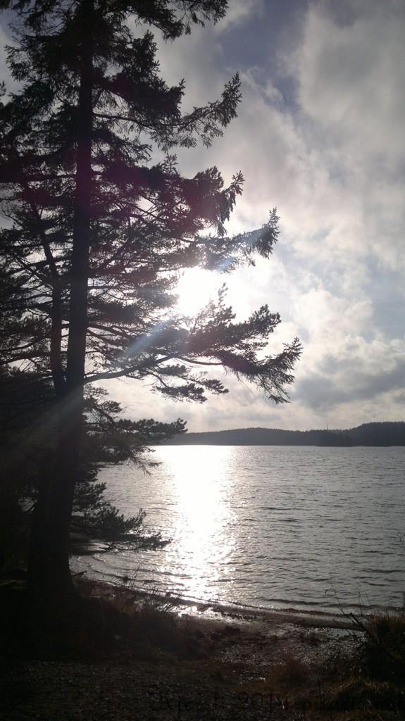 12 091114 Kyststien fra Elgåfossen til Ejgdesjön