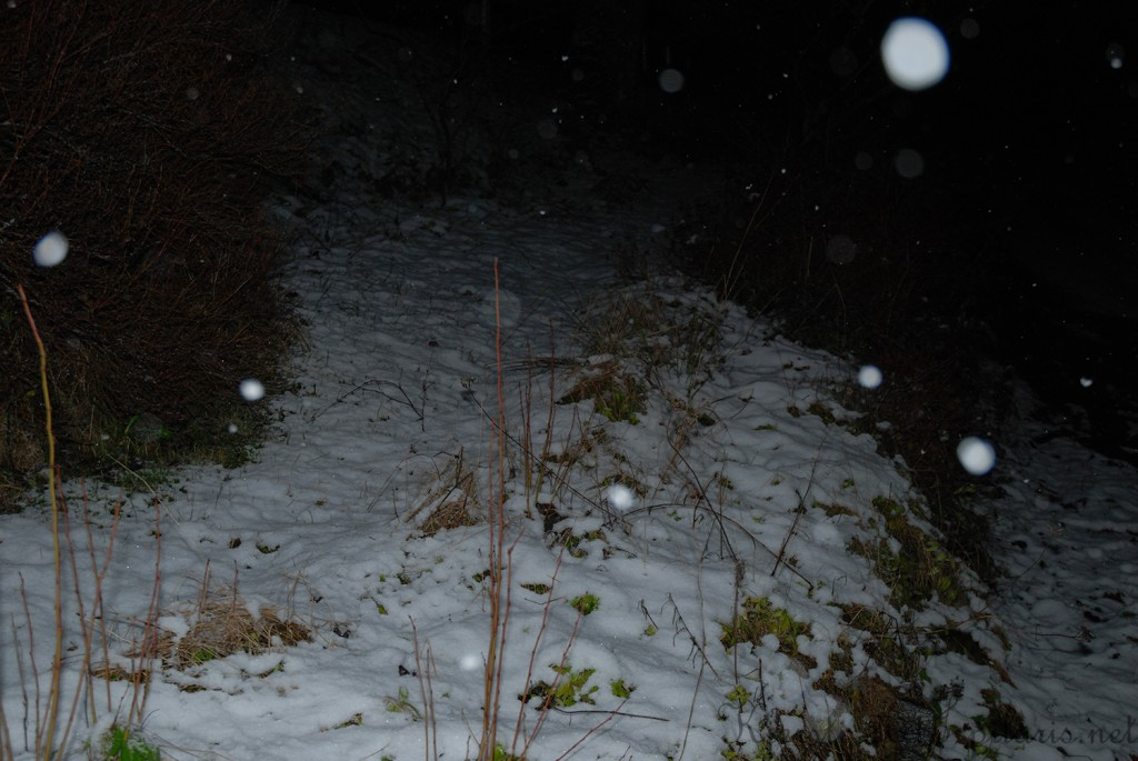 1 200115 Snø