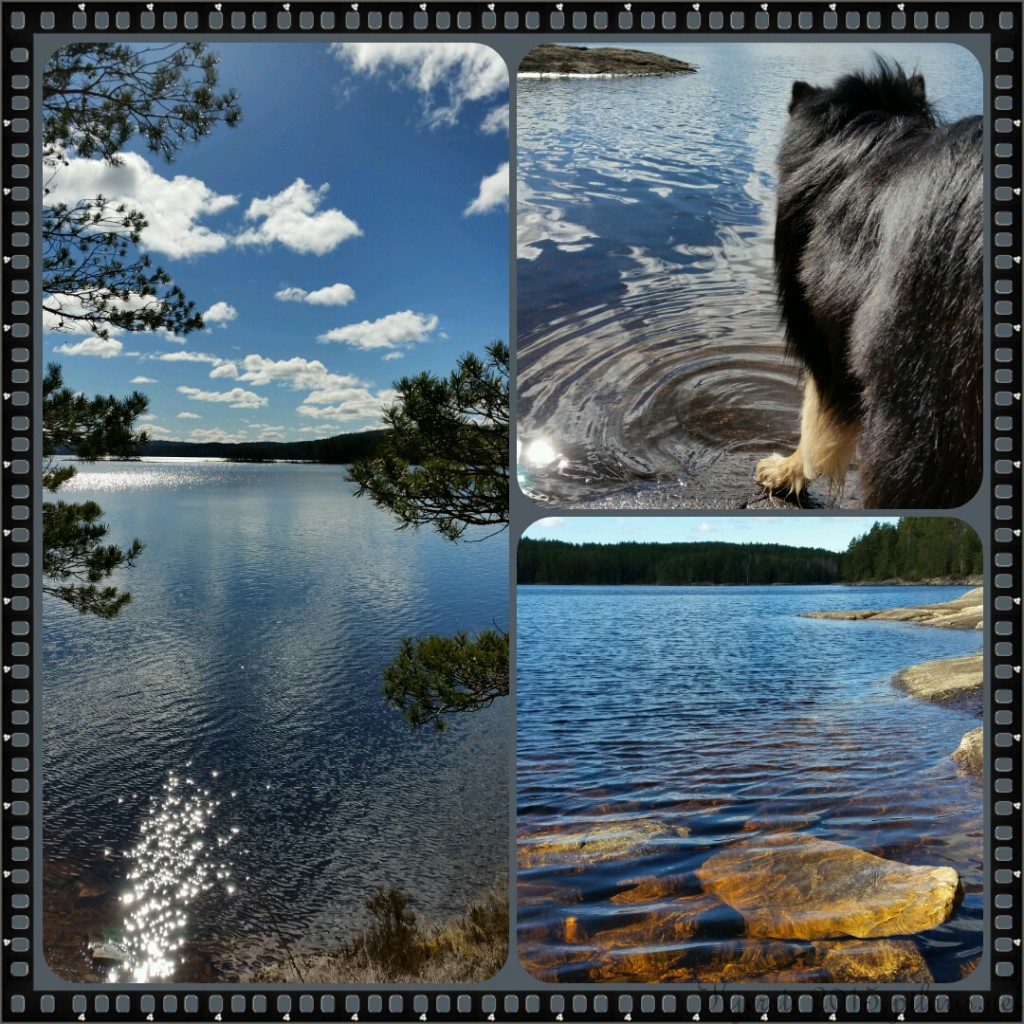 2 060415 030415 Collage Geocaching langs Store Erte