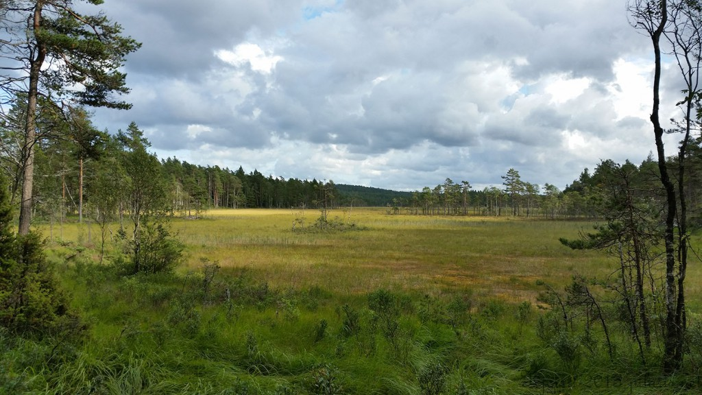 13 300815 290815 Geocaching i Rakkestadfjella