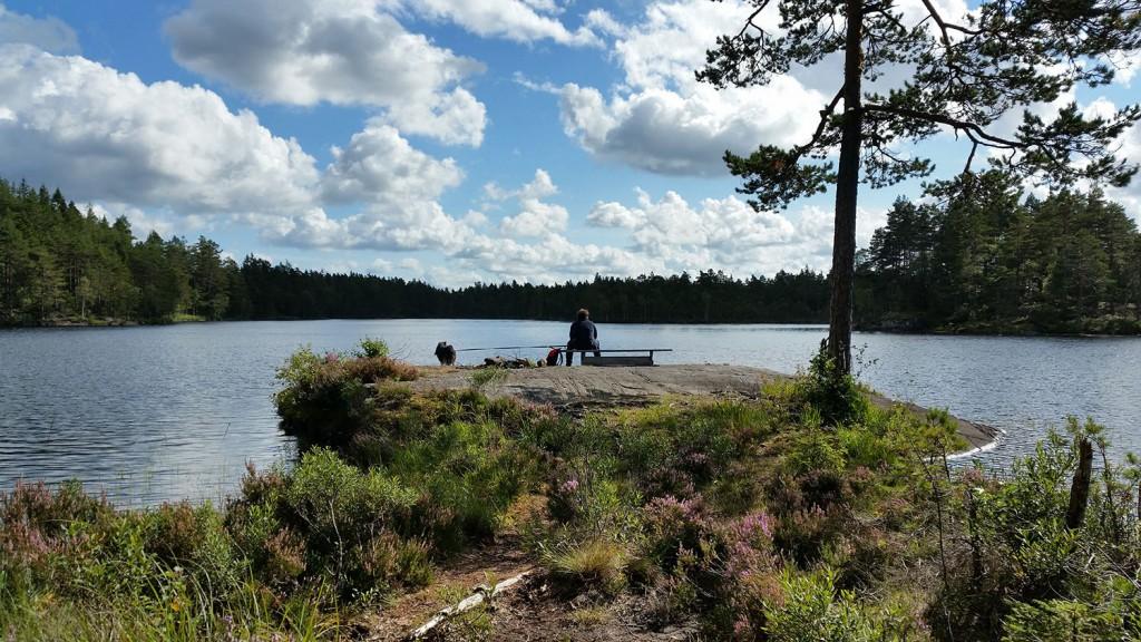 8 300815 290815 Geocaching i Rakkestadfjella