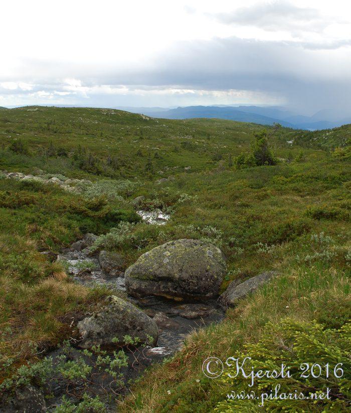 4 180716 030716 Tur til Hallingdal med Tove og Nøve
