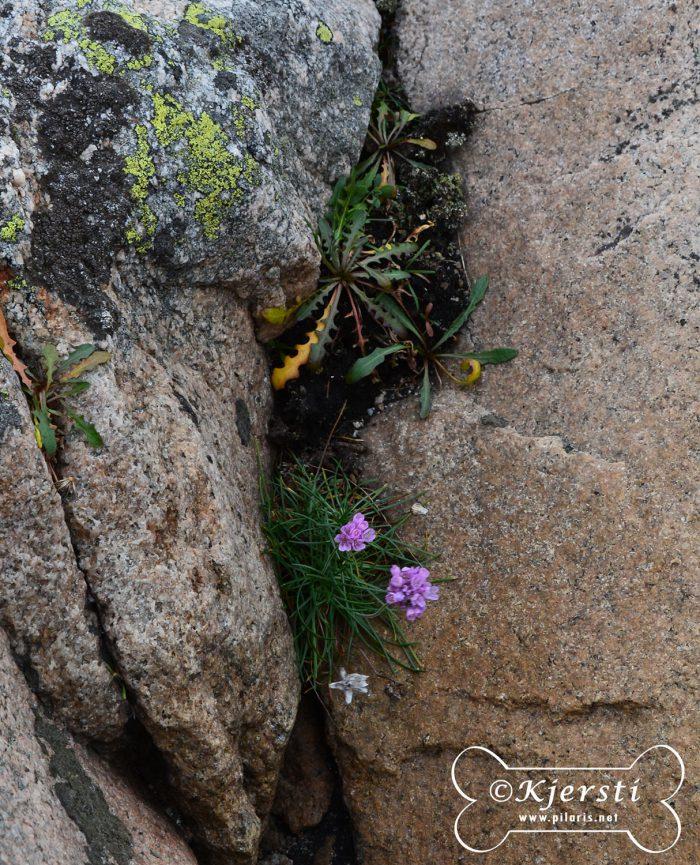 3-221016-geocaching-pa-salto