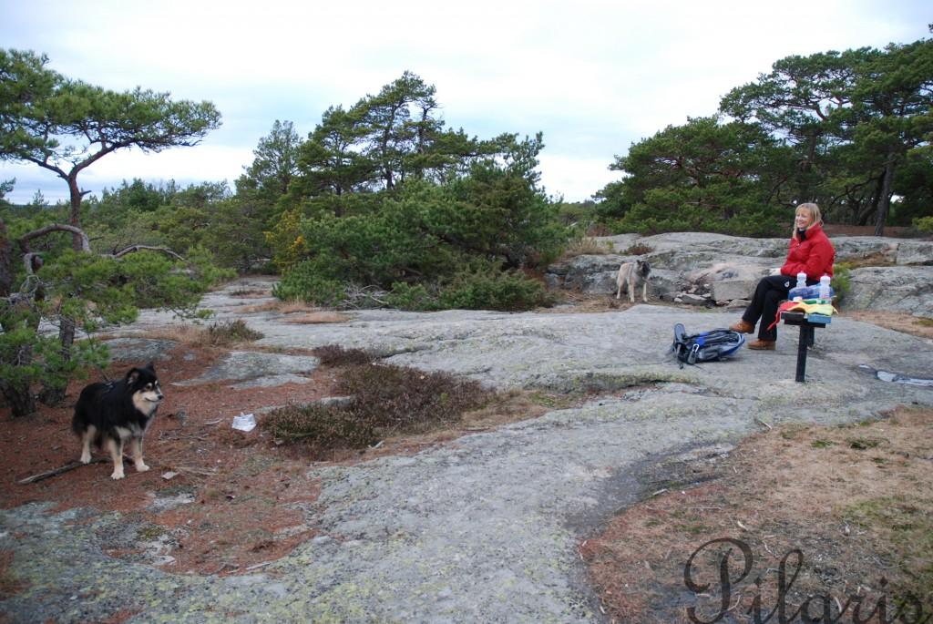 27 311212 291112 Geocaching på Kråkerøy sammen med A og Intira