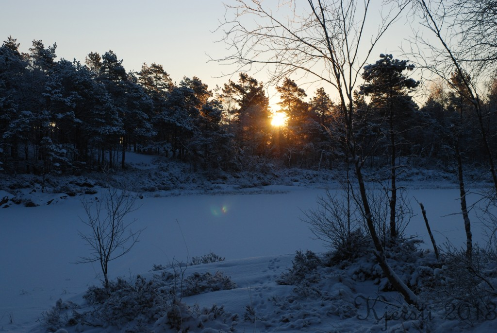 1 190113 Geocaching - Fjell bru - Sandsjø - Fjell bru