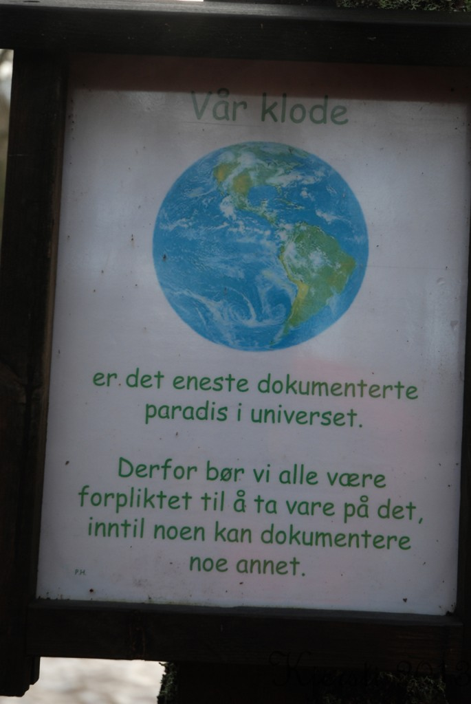 4 010113 Elgåfossen