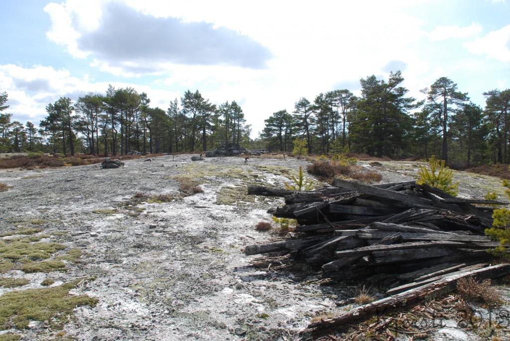 10 210413 Aspedammen - Skårefjell - Aspedammen