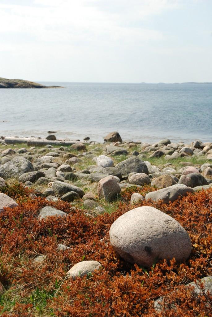 4 180513 Geocaching på Saltö