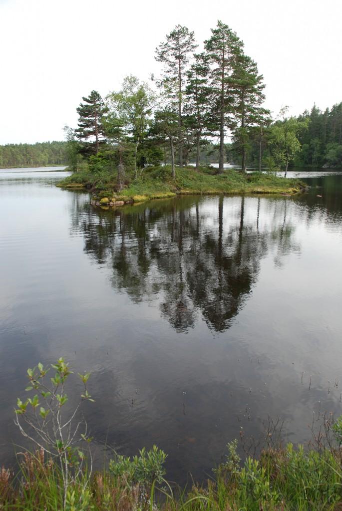 11 140713 130713 Telttur i Tresticklans Nationalpark - Kleningen