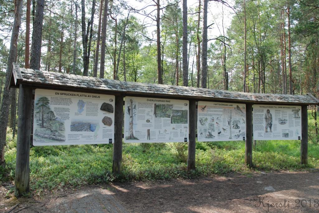 2 140713 130713 Telttur i Tresticklans Nationalpark