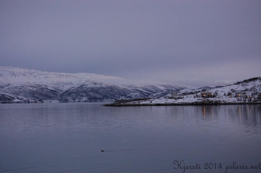 1 180114 120114 Eileif jobber i Tromsø - utsikt