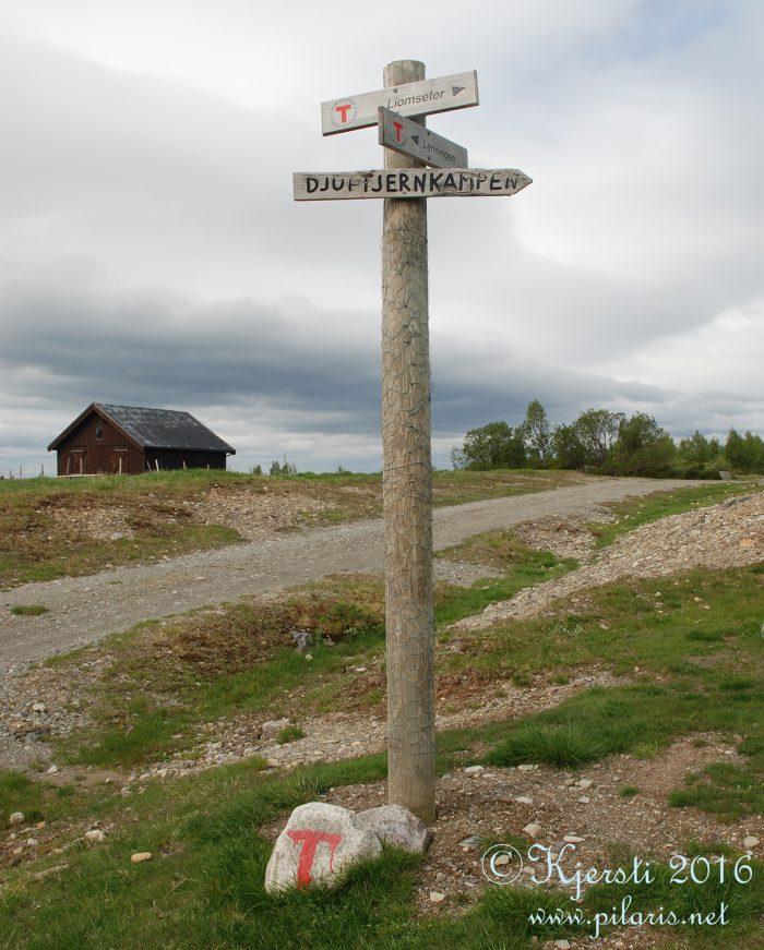 6 200616 180616 Spåtind