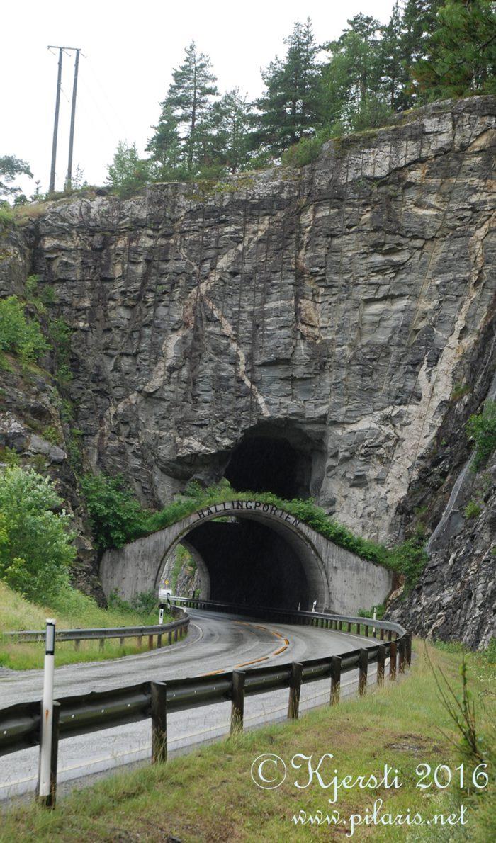 2 050716 020716 Tur til Hallingdal med Tove og Nøve